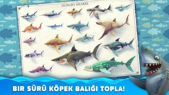 Hungry Shark World Para Hileli MOD APK [v4.4.2] 5