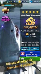 Monster Fishing 2021 Para Hileli MOD APK [v0.1.200] 1